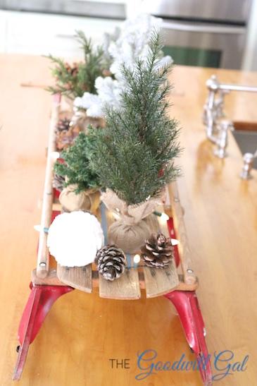 sled1 (1)